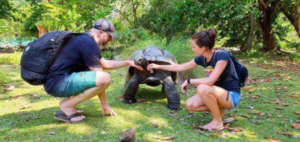 Private Bootstour zur Riesenschildkröten-Insel Curieuse